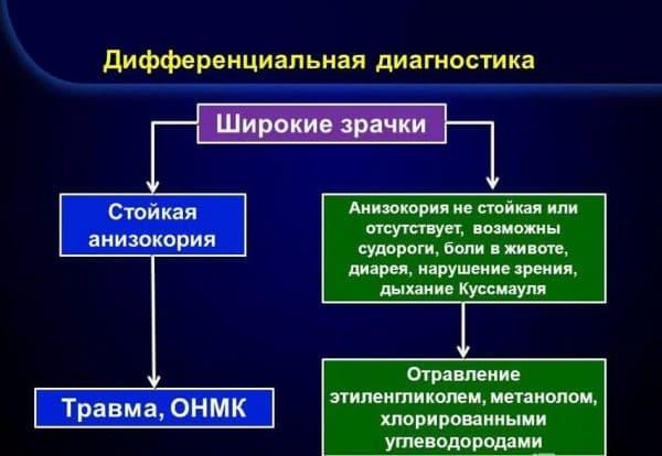 Дифференциальная диагностика анизокории