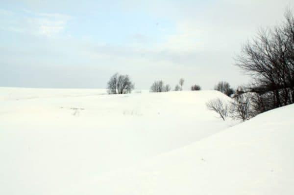 Снежная офтальмия