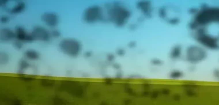 Если перед глазами летают мушки
