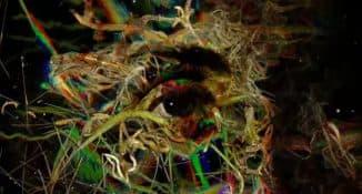 Фотопсия глаза